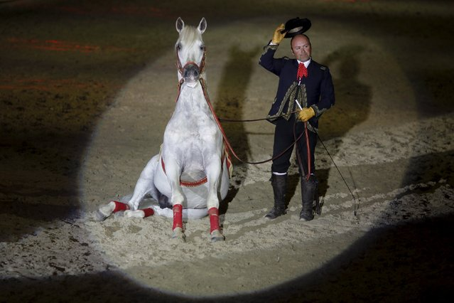 An Andalusian man acknowledges the crowd next to his horse, during the Sacab Andalusian Horse Show in Coin, southern Spain, April 12, 2015. (Photo by Jon Nazca/Reuters)