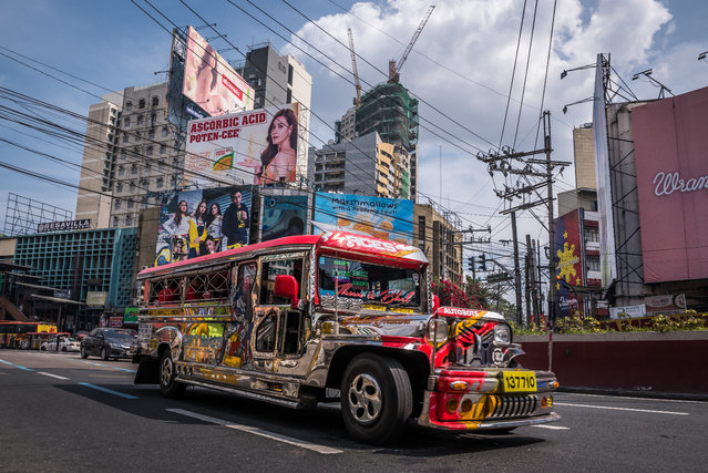 """A jeepney is cruising through Metro Manila. Whilst the city is developing fast, the jeepney is considered a dinosaur because of their old-fashioned looks and diesel engines. The """"Kings of the Road"""" is the Pinoy's icon of ingenuity and had originally been carved from abandoned US army jeeps to eventually become the king of public transportation all over the Philippines. The upcoming phaseout in 2020 is believed to cause massive displacement or unemployment of drivers plus higher fares for the commuters. (Photo by Claudio Sieber/Barcroft Media)"""