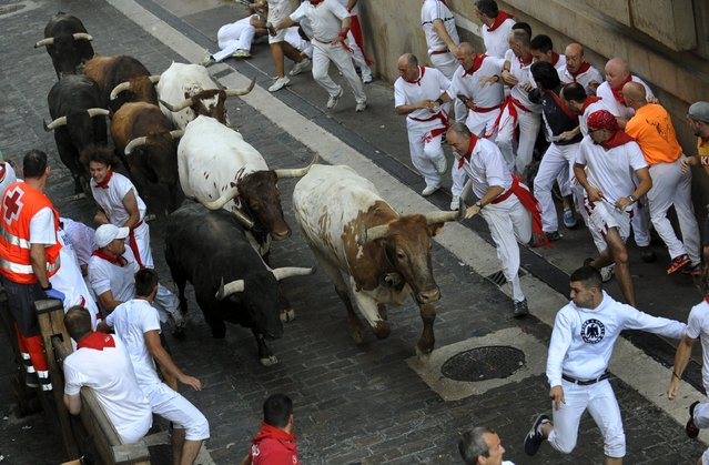 A runner runs in front of a pack of Jandilla fighting bulls on Santo Domingo hill during the first running of the bulls of the San Fermin festival in Pamplona, northern Spain, July 7, 2015. Two runners were gored in the run that lasted 2 minutes and 23 seconds, according to local media. (Photo by Eloy Alonso/Reuters)