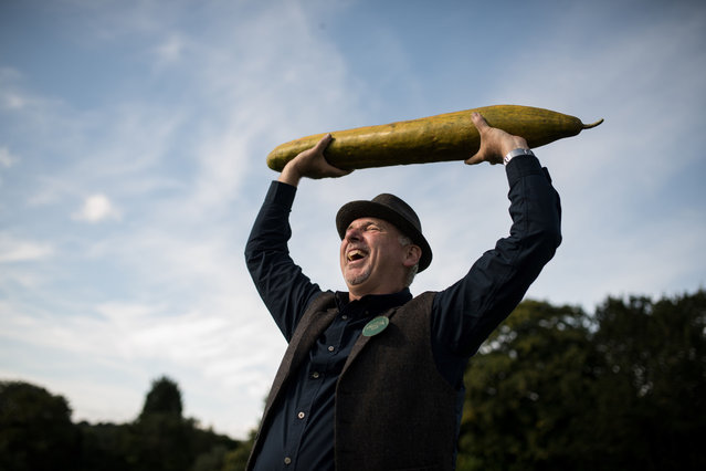 Grower Graham Barratt holds aloft his 92cm-long cucumber which won first prize in the longest cucumber category of the giant vegetable competition, on the first day of the Harrogate Autumn Flower Show held at the Great Yorkshire Showground, in Harrogate, northern England, on September 13, 2019. (Photo by Oli Scarff/AFP Photo)