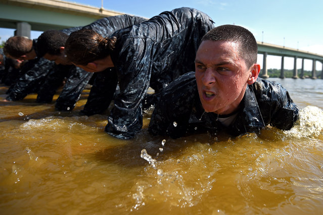 Members of the United States Naval Academy freshman crawl under one another at the wet and sandy station during the annual Sea Trials training exercise at the U.S. Naval Academy on May 13, 2014 in Annapolis, Maryland. For 14 hours, the United States Naval Academy freshman class, also known as Plebes, worked as a team to complete many grueling physical and mental challenges that help prepare them for real-world experiences and reinforce leadership, bonds, trust, and teamwork. (Photo by Patrick Smith/Getty Images)