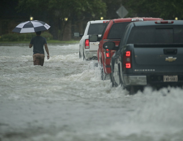 A pedestrian crosses a street inundated by floodwaters from Tropical Storm Harvey on Sunday, August 27, 2017, in Houston, Texas. (Photo by Charlie Riedel/AP Photo)