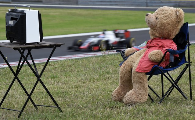 A teddy bear is placed on a chair during the second practice session for Sunday's Formula One Hungary Grand Prix, at the Hungaroring racetrack, in Budapest, Hungary, Friday, July 22, 2016. (Photo by Kovács Tamás/MTI)