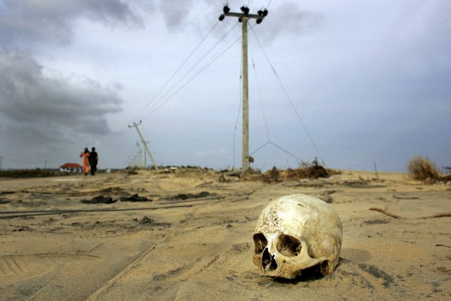 A skull displaced from its coffin that was unearthed by a tsunami last weekend lies on the roadside in Sinnamunhattuvaram on Sri Lanka's east coast in this January 3, 2005 file photo. (Photo by Kieran Doherty/Reuters)