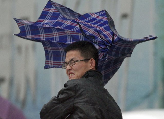 A man's umbrella is blown by wind during a heavy rain in Yantai, Shandong province, November 6, 2015. (Photo by Reuters/Stringer)