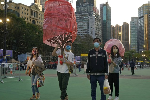 Customers wearing face masks to protect against the spread of the coronavirus, carry peach blossom trees at the flower markets in Victoria Park of Hong Kong, Saturday, February 6, 2021. Traditional Lunar New Year flower markets opened Saturday in Hong Kong, after a government virus policy U-turn. At the biggest venue, Victoria Park next to the popular downtown shopping district of Causeway Bay, the eerie emptiness is in stark contrast to the usual bustle of capacity crowds. (Photo by Kin Cheung/AP Photo)