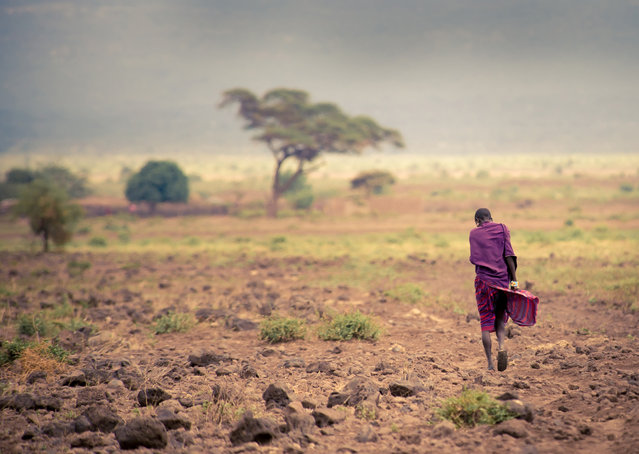 """On the move"". A lonely Massai walking in the desert. Location: Kenya, Ambosseli. (Photo and caption by Romana Wyllie/National Geographic Traveler Photo Contest)"