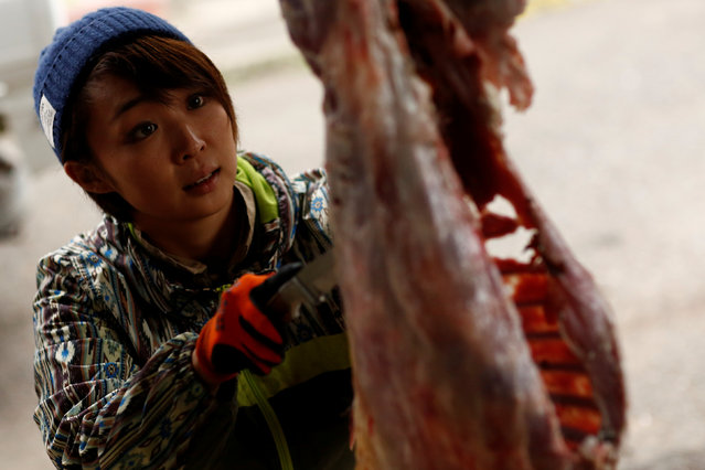 Hunter Chiaki Kodama guts a deer in a shed in Oi, Fukui Prefecture, Japan, November 17, 2016. (Photo by Thomas Peter/Reuters)