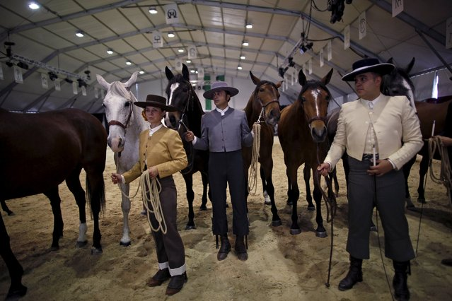 Andalusian riders wait for trophies at the arena with their Spanish thoroughbred horses after a form contest during the Sacab Andalusian Horse Show in Coin, southern Spain, April 12, 2015. (Photo by Jon Nazca/Reuters)