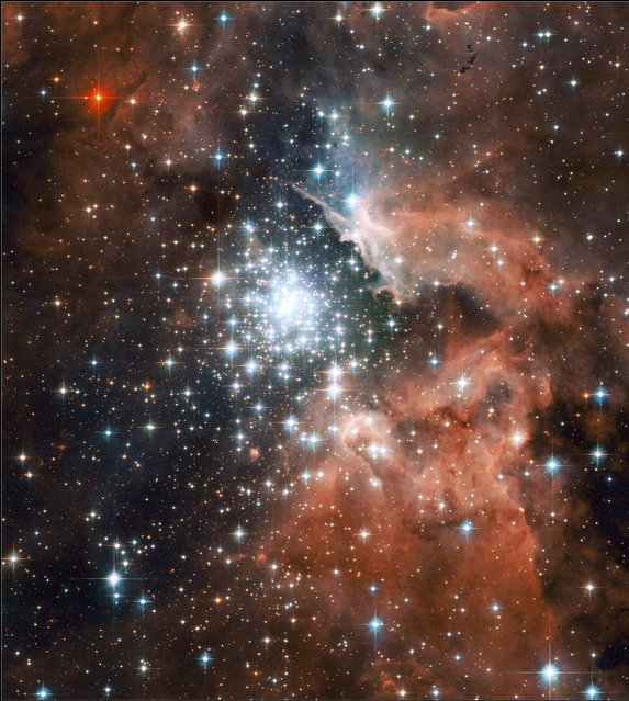 An image shows a giant star-forming nebula with massive young stellar clusters. (Photo by Reuters/NASA/ESA/Hubble)