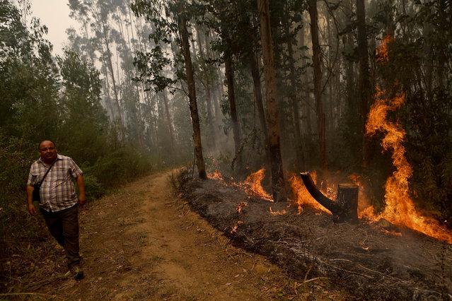 Jaime Munoz walks past a wildfire blaze in Florida, a community of Concepcion, Chile, Friday, January 27, 2017. (Photo by Esteban Felix/AP Photo)
