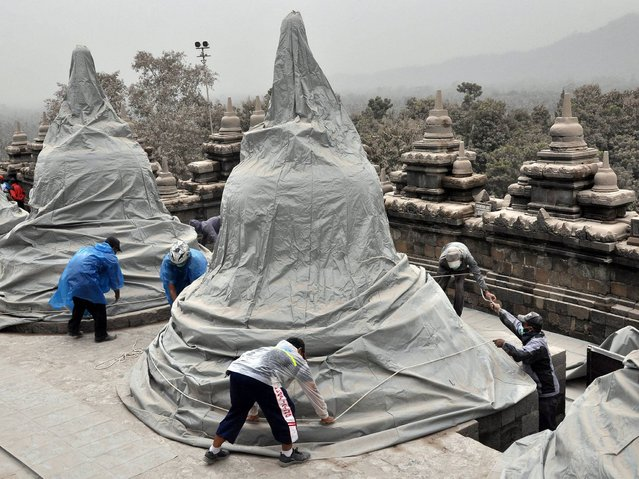 Indonesian workers cover the famous Borobudur temple to protect it from volcanic ash from the Mount Kelud volcano eruption in Magelang, Central Java. (Photo by EPA/Assabili)