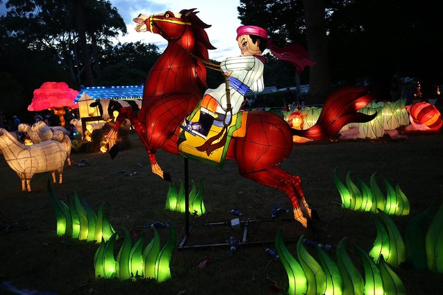 Some of the lanterns on display at the Auckland Lantern Festival at the Auckland Domain on February 9, 2017 in Auckland, New Zealand. The Lantern Festival is Auckland's largest cultural festival and New Zealand's largest Chinese festival, with more than 200,000 people attending in 2016. (Photo by Michael Bradley/Getty Images)
