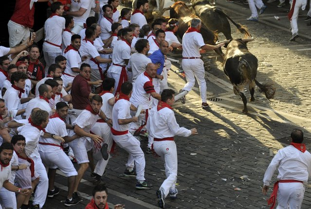 Runners sprint alongside Jandilla fighting bulls at the town hall square during the first running of the bulls of the San Fermin festival in Pamplona, northern Spain, July 7, 2015. (Photo by Eloy Alonso/Reuters)