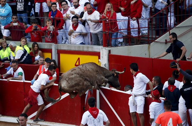 People react as a wild cow jumps over the bullring barrier after the sixth running of the bulls of the San Fermin festival in Pamplona, northern Spain, July 12, 2015. (Photo by Susana Vera/Reuters)
