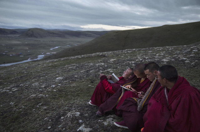 Young Tibetan monks, who are prohibited from picking cordycep fungus, read religious text under a full moon on the 15th day of  Saka Dawa, the holiest day of the Buddhist calendar, at the Sershul Monastery on May 21, 2016 on the Tibetan Plateau in the Garze Tibetan Autonomous Prefecture of Sichuan province. (Photo by Kevin Frayer/Getty Images)
