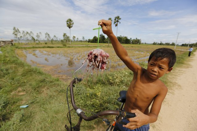 A Cambodian child poses with rats he skinned after catching them in a rice field in Takeo province, south of Phnom Penh August 11, 2015. (Photo by Samrang Pring/Reuters)