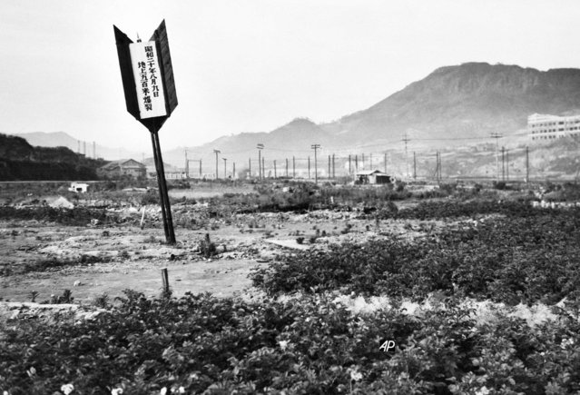 Arrow marks the spot where the A-bomb struck at Nagasaki, Japan, August 10, 1945. Much of the bombed area is still desolate, the trees on the hills in the background remained charred and dwarfed from the blast and little reconstruction, except of wooden shacks as homes, has taken place. (Photo by AP Photo)