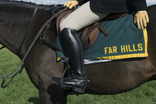 A rider sits on a horse at the Far Hills Race Day at Moorland Farms in Far Hills, New Jersey, October 17, 2015. (Photo by Stephanie Keith/Reuters)