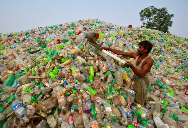 A man makes a heap of plastic bottles at a junkyard on World Environment Day in Chandigarh, India, June 5, 2018. (Photo by Ajay Verma/Reuters)
