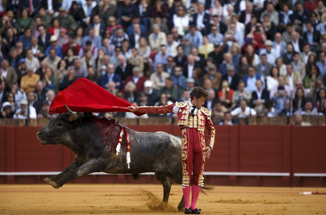 Spanish matador Manuel Escribano performs a back-pass to a bull during a bullfight at The Maestranza bullring in the Andalusian capital of Seville, southern Spain April 26, 2015. (Photo by Marcelo del Pozo/Reuters)