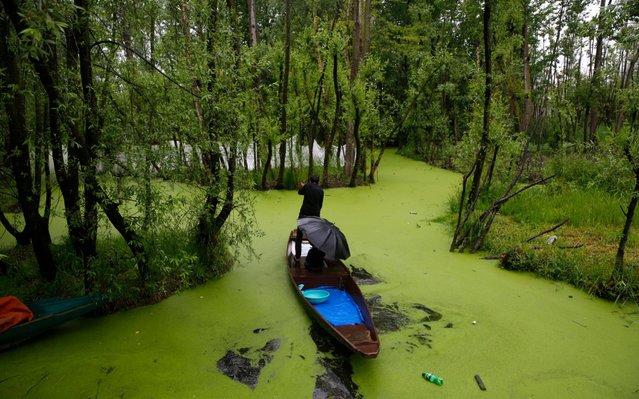 A Kashmiri boatman wades through the interiors of Nigeen Lake during rains in Srinagar, the summer capital of Indian Kashmir, 24 April 2019. The fresh rains brought down the temperature in the region. (Photo by Farooq Khan/EPA/EFE)