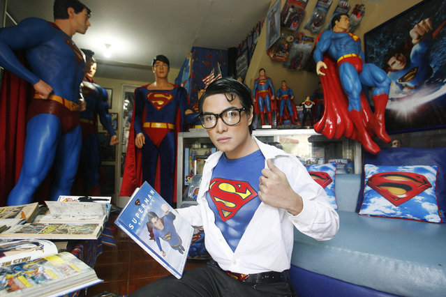 """Herbert Chavez poses with his Superman collection inside his house in Calamba Laguna, south of Manila October 12, 2011. In his idolization of the superhero, Chavez, a self-professed """"pageant trainer"""" who owns two costume stores, has undergone a series of cosmetic surgeries for his nose, cheeks, lips and chin down to his thighs and even his skin color to look more like the """"Man of Steel"""". The final result bears little resemblance to his old self. (Photo by Cheryl Ravelo/Reuters)"""