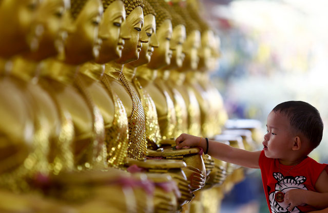 A child drops coins into golden Buddha statues as a symbol of blessings on Vesak Day at the Thai Buddhist Chetawan Temple in Petaling Jaya, near Kuala Lumpur May 13, 2014. Buddhists across the world on Tuesday celebrate holy Vesak to honour the birth, enlightenment and passing of Lord Buddha 2,550 years ago. (Photo by Samsul Said/Reuters)