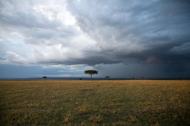"""""""Masai Mara Sunset"""". Sky touching the ground, animals running around – Masai Mara is one true dream. Photo location: Masai Mara, Kenya. (Photo and caption by Burcu Basar/National Geographic Photo Contest)"""