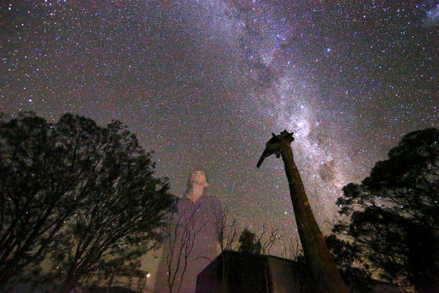 May McKeown looks up at the stars as she stands in the front yard of her homestead on her 6000 acre (2400 hectare) property of 'Long View' near the town of Come-by-Chance, located over 700 kilometres north-west of Sydney in Australia March 16, 2017. Picture taken March 16, 2017. McKeown, aged 78, lives and works on her property mostly alone as her son is constantly travelling. She daily inspects the property and hand-feeds her cattle, writing poems in her spare time about her lonely life on the flat north-west plains. (Photo by David Gray/Reuters)