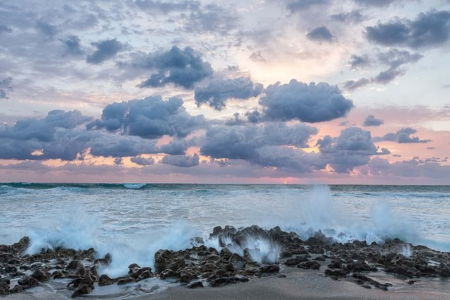 "Honorable Mention, Oceans. ""Ocean Blooms"". (Photo by Jon Evan Glaser/The Palm Beach Post)"