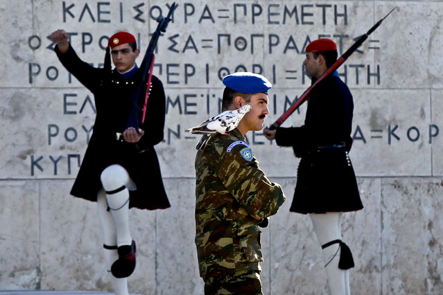 A pigeon sits on the shoulder of a Greek Presidential Guard as his colleagues in traditional Evzones' costumes perform ceremonial duties at the tomb of the unknown soldier in Athens, October 31, 2012. (Photo by Kostas Tsironis/Associated Press)