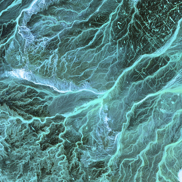 "Meandering wadis combine to form dense, branching networks across the stark, arid landscape of southeastern Jordan. The Arabic word ""wadi"" means a gulley or streambed that typically remains dry except after drenching, seasonal rains. This scene was acquired by the ASTER instrument on NASA's Terra satellite on May 17, 2001. (Photo by NASA/GSFC/USGS EROS Data Center)"
