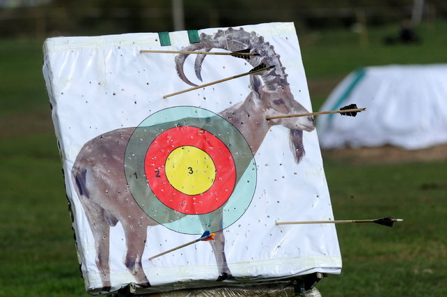 A shooting target depicting a mouflon at the 2016 World Nomad Games in Cholpon-Ata, Kyrgyzstan on September 5, 2016. (Photo by Viktor Drachev/TASS via Getty Images)