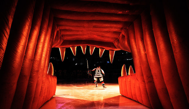Adrian Grygiel of Augsburger skates onto the ice before the DEL Ice Hockey match between Augsburger Panther and Schwenninger Wild Wings at Curt Frenzel Stadium on November 2, 2014 in Augsburg, Germany. (Photo by Adam Pretty/Bongarts/Getty Images)