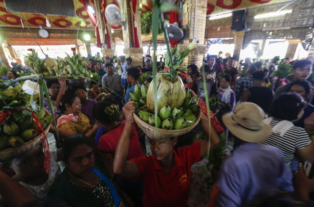 Worshippers hold flowers, coconut and bananas in front of the shrines at Taungbyone festival, near Mandalay, Myanmar, 18 August 2018. Thousands of believers across the country are gathering at Taungbyone village, about 15 kilometers north of Mandalay city, to celebrate annual Nats (spirits) festival which will be held from 19 to 26 August 2018. Every year in August, for the eight days prior to the full moon, the Taungbyon Nats festival is held to honor the two brothers, locally known as Min Gyi and Min Lay executed in the eleventh century, and is attracting spirit worshippers from throughout the country as well as tourists from the world. (Photo by Lynn Bo Bo/EPA/EFE)
