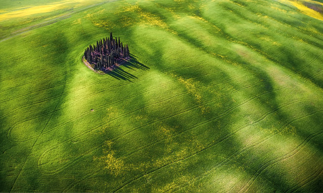 Green waves. This shot, taken in Italy, won second prize in the Amateur Beauty category. (Photo by Mauro Pagliai/SkyPixel)