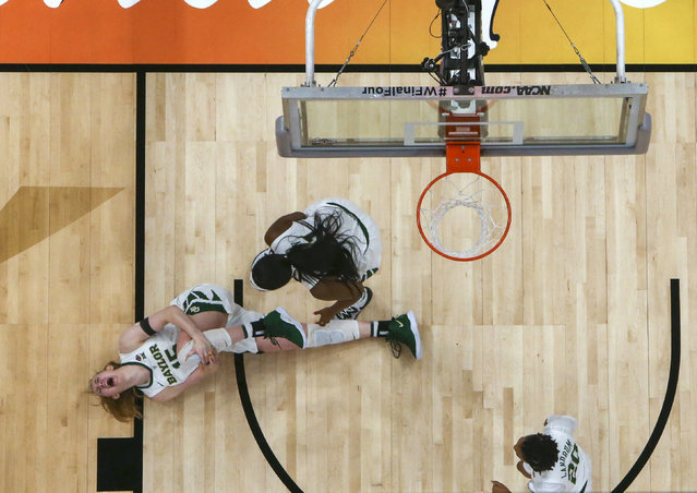 Baylor forward Lauren Cox (15) grabs her knee as teammates Kalani Brown (21) and  Juicy Landrum (20) watch after Cox was injured during the second half against Notre Dame in the Final Four championship game of the NCAA women's college basketball tournament Sunday, April 7, 2019, in Tampa, Fla. (Photo by Dirk Shadd/Tampa Bay Times via AP Photo)