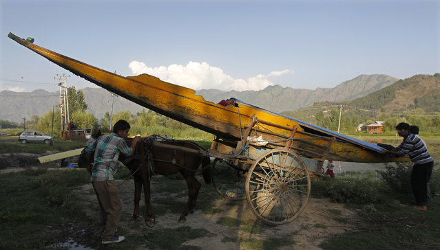 Kashmiri men unload a boat from a horse cart near Dal Lake in Srinagar August 8, 2012. (Photo by Danish Ismail/Reuters)