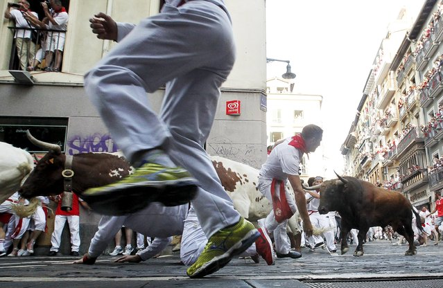 A fallen runner gets up next to a Jandilla fighting bull as others fall and run past him at the Mercaderes curve during the first running of the bulls of the San Fermin festival in Pamplona, northern Spain, July 7, 2015. (Photo by Susana Vera/Reuters)