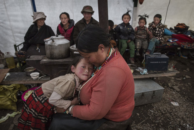 A Tibetan family gather in their tent after a day of working in the mountains at a temporary camp for cordycep pickers on May 23, 2016 on the Tibetan Plateau near Zadoi in the Yushu Tibetan Autonomous Prefecture of Qinghai province. (Photo by Kevin Frayer/Getty Images)