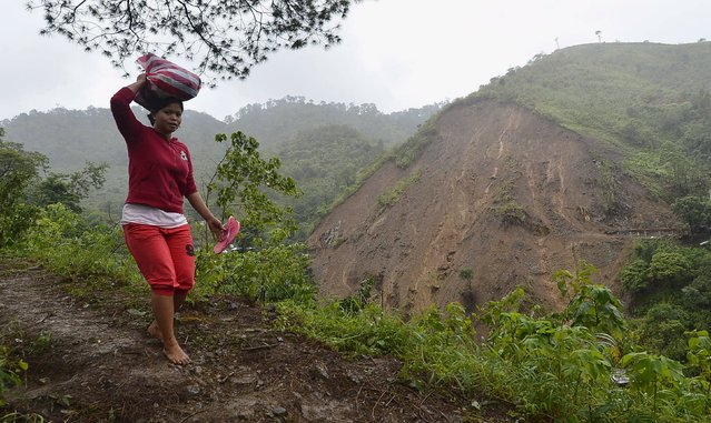 A woman hikes up a mountain overlooking a landslide caused by Typhoon Goni, that damaged a portion of Kennon Road, in Baguio city in northern Philippines, August 23, 2015. The death toll in the Philippines from Typhoon Goni rose to nine after five more people were buried by landslides in mountainous areas, officials said on Saturday. (Photo by Harley Palangchao/Reuters)