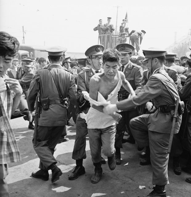 Tokyo police lead away a student whose shirt is torn to shreds after a clash between police and left wing groups for the second consecutive day in downtown Tokyo, September 29, 1962. The demonstrations were against public hearings on constitutional reforms. (Photo by Mitsunori Chigita/AP Photo)