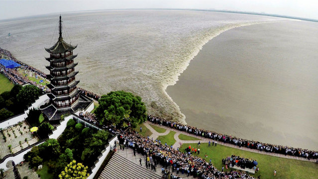 Spectators watch a tidal bore as it travels down the Qiantang river in Zhejiang province, Haining, China on September 18, 2016. (Photo by Imaginechina/Rex Features/Shutterstock)