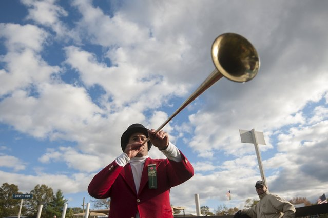A man blows a bugle to signal the start of a horse race at the Far Hills Race Day at Moorland Farms in Far Hills, New Jersey, October 17, 2015. (Photo by Stephanie Keith/Reuters)