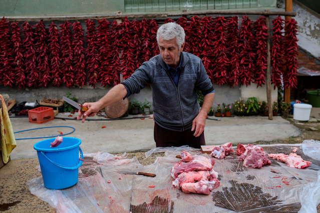 A man cuts meat as bunches of paprika hang on the wall of his house to dry in the village of Donja Lakosnica, Serbia October 6, 2016. (Photo by Marko Djurica/Reuters)