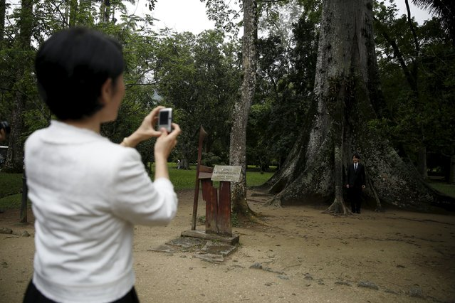 Japan's Prince Akishino poses with a Sumauma tree as his wife Princess Kiko takes a photo during a visit to the Rio de Janeiro Botanic Garden, Brazil, November 8, 2015. Prince Akishino and Princess Kiko are on a 12-day official visit to Brazil to celebrate 120 years of friendship between Japan and Brazil. (Photo by Pilar Olivares/Reuters)