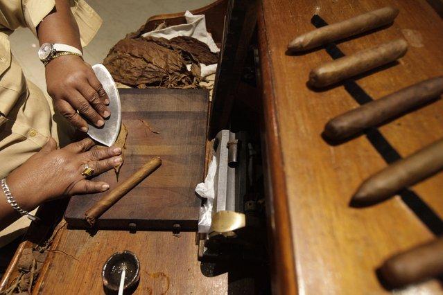 Staff member Maria Regla, 60, rolls cigars at a hotel in Havana December 19, 2014. (Photo by Enrique De La Osa/Reuters)