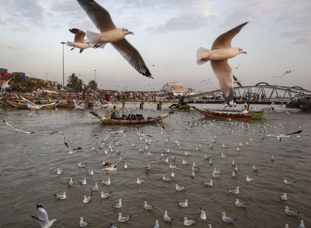 A passenger boat moves across the water while people onboard feed seagulls at Botahtaung Jetty in Yangon January 22, 2015. (Photo by Soe Zeya Tun/Reuters)