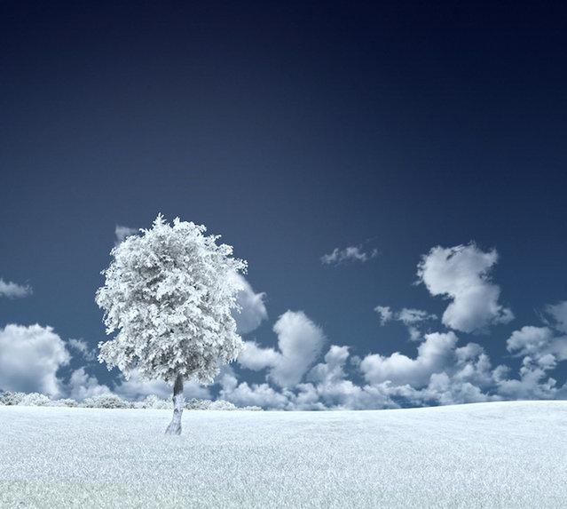 Beautiful Blue World By Caras Ionu